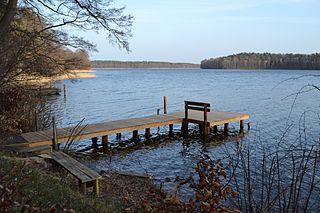Großer Zechliner See Lake in Brandenburg, Germany.