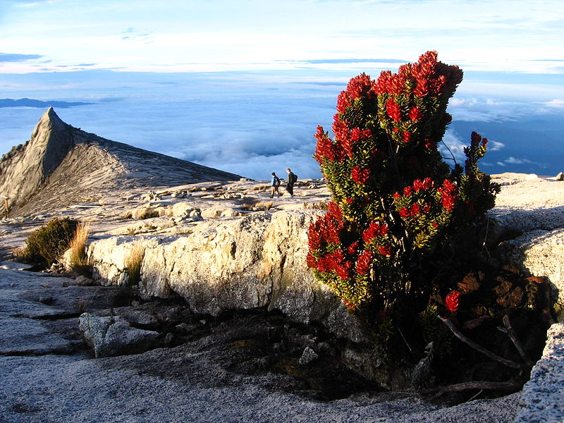 File:Gunung Kinabalu.jpg