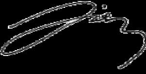 Hüseyin Çelik - Image: Hüseyin Çelik signature