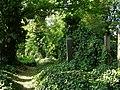 Hřbitov - Olšanské hřbitovy (Žižkov), Praha 3, Vinohradská, Želivského, Jičínská, Žižkov - oddíl II.JPG