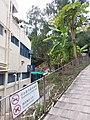 HK Sai Kung District 西貢 Sai Kung Ma On Shan Country Park 三星灣泳灘 Trio Beach February 2021 SSG 16.jpg