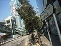 HK Sham Mong Road No 1.JPG