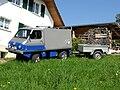 Haflinger703AP3.jpg