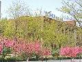 Haidian, Beijing, China - panoramio (265).jpg