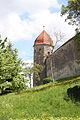 Harburg (Schwaben) Burg 1851.JPG