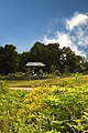 Harpeth river greenway at Old Harding pike (trail head sign) - panoramio.jpg