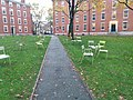 Harvard University,. November, 2019. pic.z5.5 Cambridge, Massachusetts.jpg