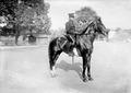 Hauptmann im Generalstab Iselin, Teilnehmer des Pferderennens in Thun - CH-BAR - 3240588.tif