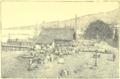 Haurigot - Excursion aux Antilles françaises, 1890 - Illustration p61.png