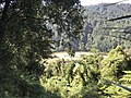 Heaphy Track - Looking down on Heaphy River.jpg
