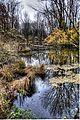 Herbststimmung in der Amper Aue bei Olching, Oberbayern (8192301131).jpg