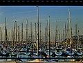 Herzliyya harbour (2063138374).jpg