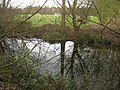 Hidden Pond - geograph.org.uk - 1175180.jpg
