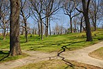 High Park, Toronto DSC 0232 (17367647816).jpg