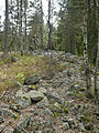 Hill fort near Maridalsvannet, Oslo, Norway.jpg