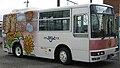 Himawari Taxi PurattoBus 81.jpg