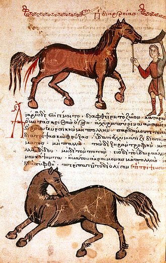Veterinary medicine - Manuscript page of Hippiatrica (14th century)
