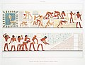 Histoire de l'Art Egyptien by Theodor de Bry, digitally enhanced by rawpixel-com 122.jpg