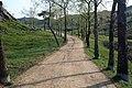 Hliněná okresní silnice - panoramio.jpg