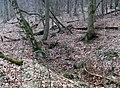Hoffmannstollen I - Einsturz.jpg