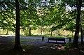 Holosiivskyi Park, Kyiv 0001 06.JPG