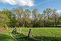 Horn-Bad Meinberg - 2015-05-04 - LIP-004 Naptetal (29).jpg