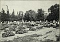 Horticultural exhibitions and garden competitions (1919) (14772580935).jpg
