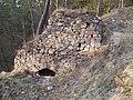 Hrad Zlenice (13).jpg