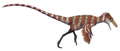 Huaxiagnathus reconstruction.png