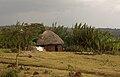 Hut (5071823007).jpg
