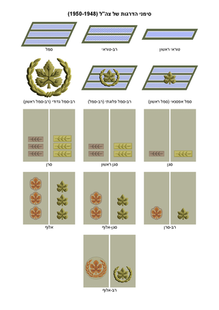 IDF (Ground Forces) insignia of ranks 1948-1950.png