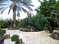 ISRAEL, Capernaum, Orasul lui Isus, Statuie (5).JPG