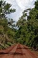 Iguazú, Misiónes, Argentina - panoramio (39).jpg