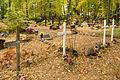 Iisaku kalmistu.jpg