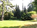 Imperial Botanical Garden 1713 - panoramio (2).jpg