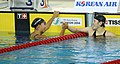 Incheon AsianGames Swimming 33.jpg