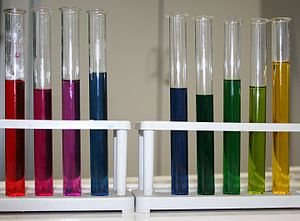 English: natural pH indicator Red Cabbage (lef...