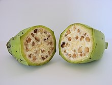 Photo of two cross-sectional halves of seed-filled fruit