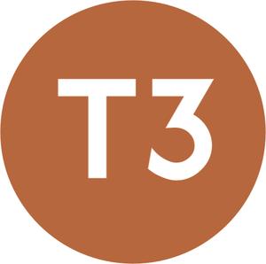 Trams in Bursa - Image: Istanbul Line Symbol T3