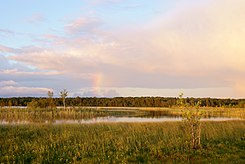 Het Järisemeer op Saaremaa, het grootste eiland van Estland en het op een na grootste in de Oostzee