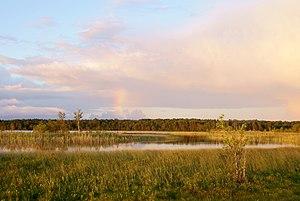 Järise järv Saaremaal.jpg