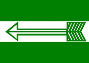 13th Lok Sabha - Image: Janata Dal (United) Flag
