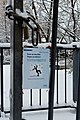 Jardin naturel (Paris) sous la neige 02.jpg