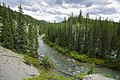 Jasper National Park 13.jpg