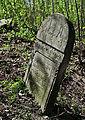 Jewish cemetery Zelechow IMGP3185.jpg