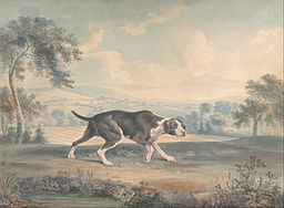 John Buckler - The Spanish Pointer - Google Art Project