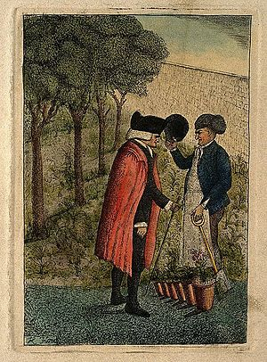 John Hope (botanist) - Image: John Hope. Coloured etching by J. Kay, 1786. Wellcome V0002873