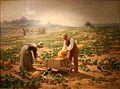 Jourdan-La récolte de couges en Provence.jpg