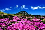 KOCIS Halla Mountain in Jeju-do (6387785543).jpg