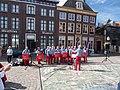 Kaaphoorn singing in Hoorn.JPG